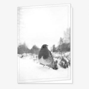 Rouwkaart met Vogel