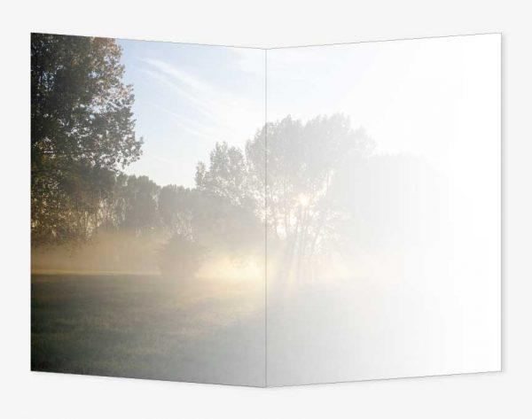 ad_23_02_b_boom-zonstralen_rouwkaart