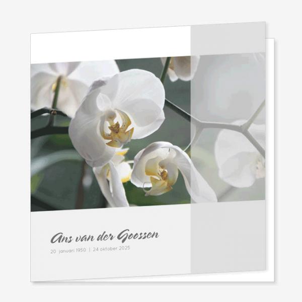 Rouwkaart Orchidee wit