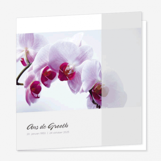 Rouwkaart Orchidee roze