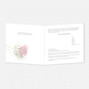 Rouwkaart Roos gipskruid